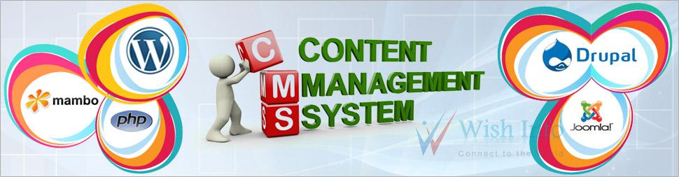 CMS Development Company