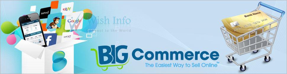 Custom BigCommerce Website Design