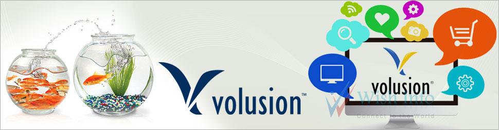Custom Volusion Website Design