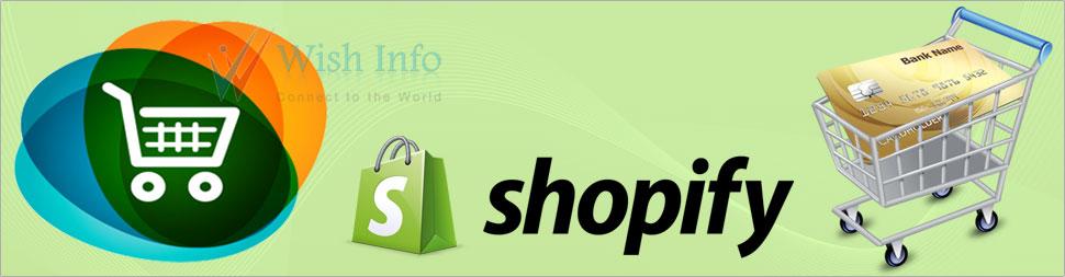Hire Shopify API Consultant
