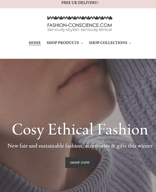 Fashion Conscience